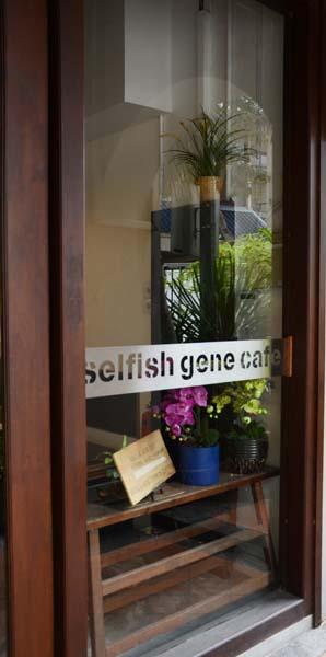 Window at Selfish Gene
