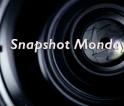Snapshot Monday