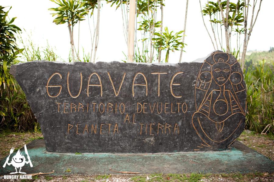 Guavate