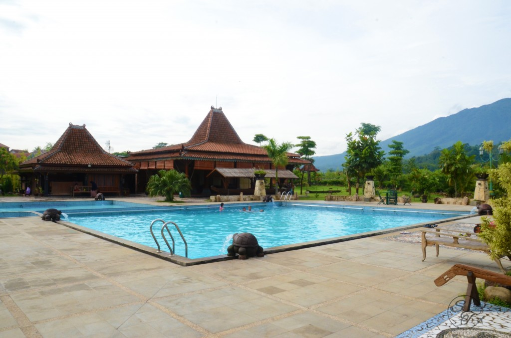 Pool with traditional Javanese villas