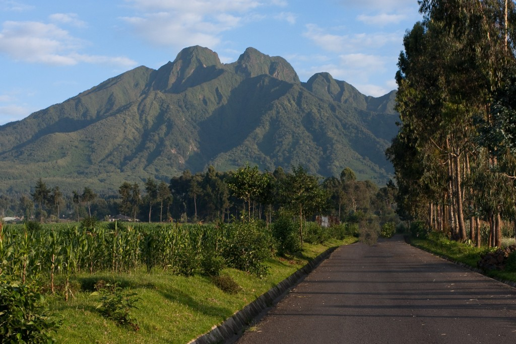 Adventure and Beauty with 1000 Shades of Green Tour and Safari Company – Rwanda