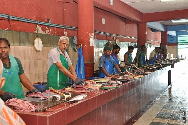 24 hours in male maldives seriously travel for Fish market hours