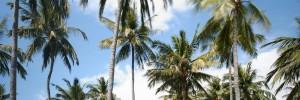 Return To Yourself Retreat at Spa Village Resort Tembok, Bali