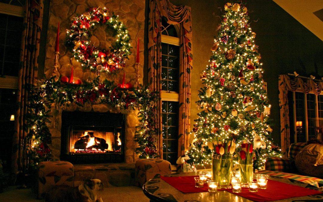 The Holiday Tree ~ Snapshot Monday