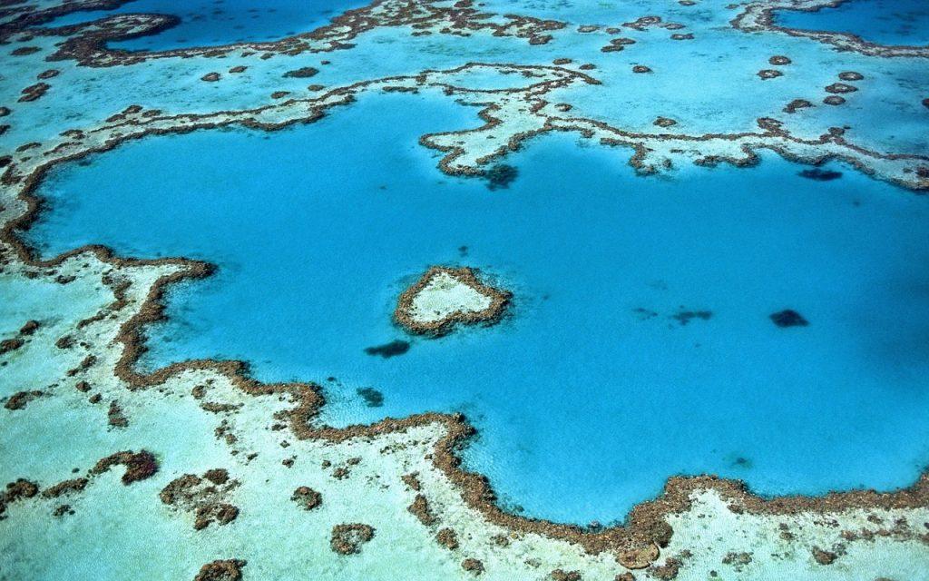 Snapshot Monday ~ Coral Reefs