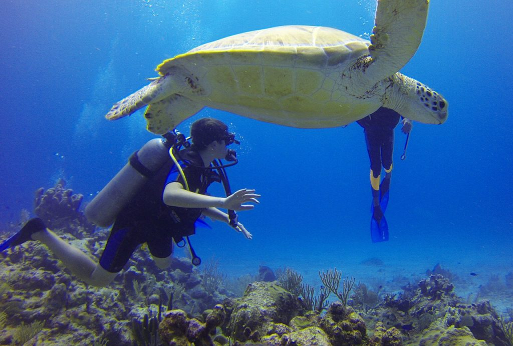 Inspiration Friday ~ Scuba Diving
