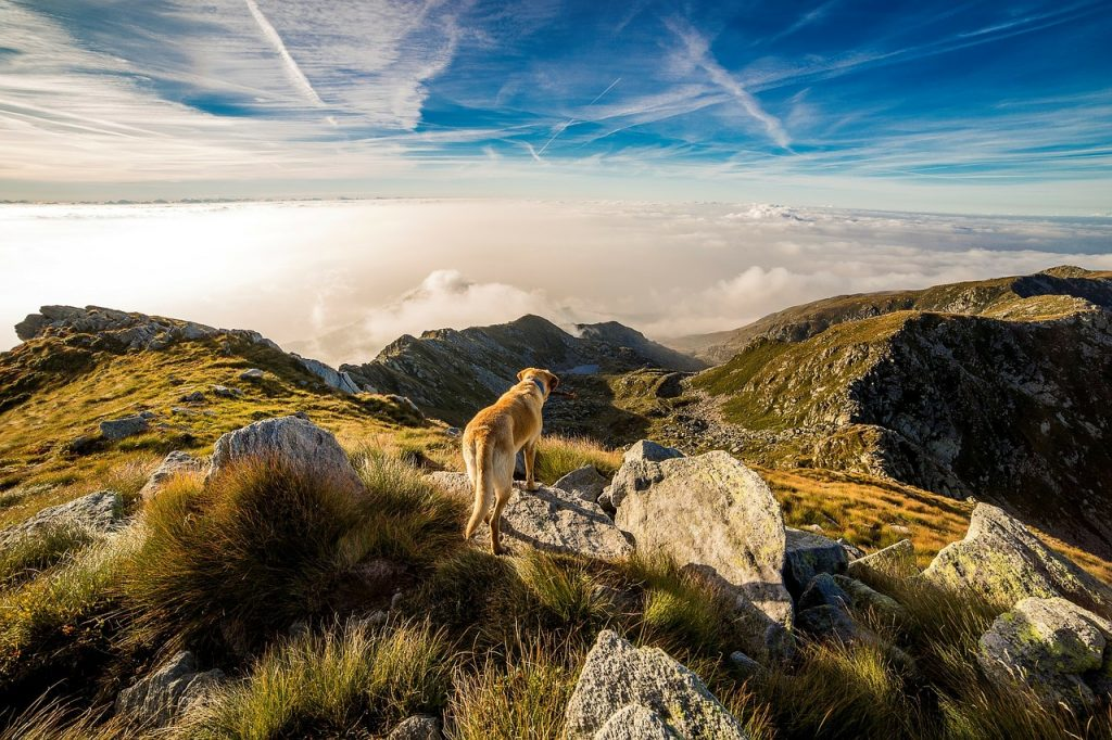 Top 10 Adventure Places in Europe