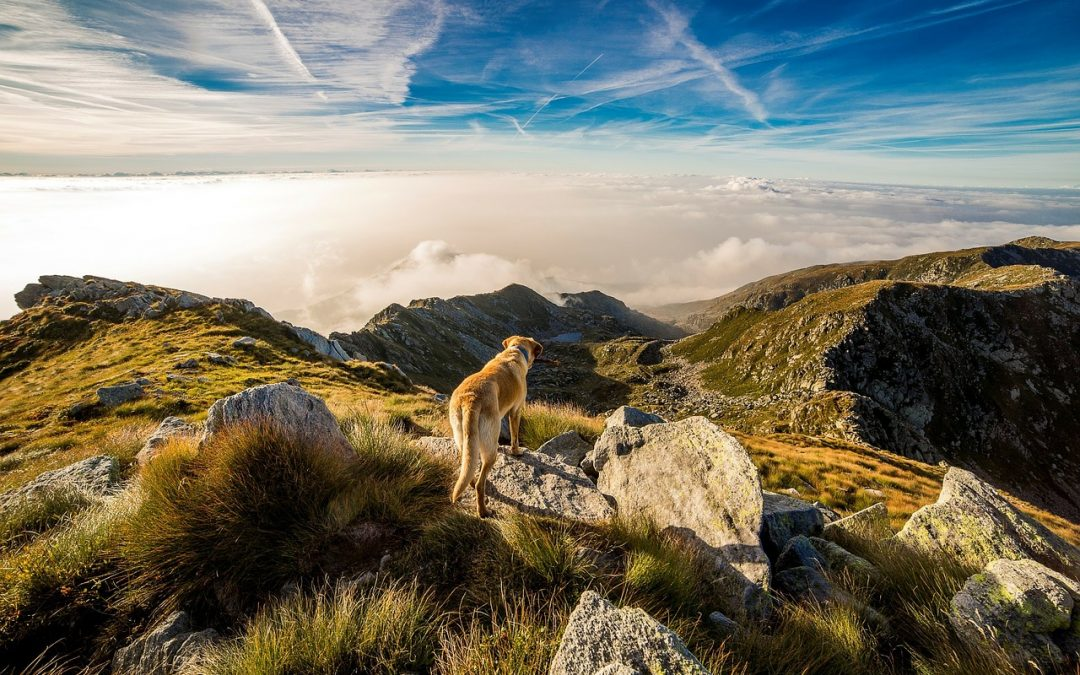 Top 10 Adventure Places in Europe – Guest Post by Howard Scalia