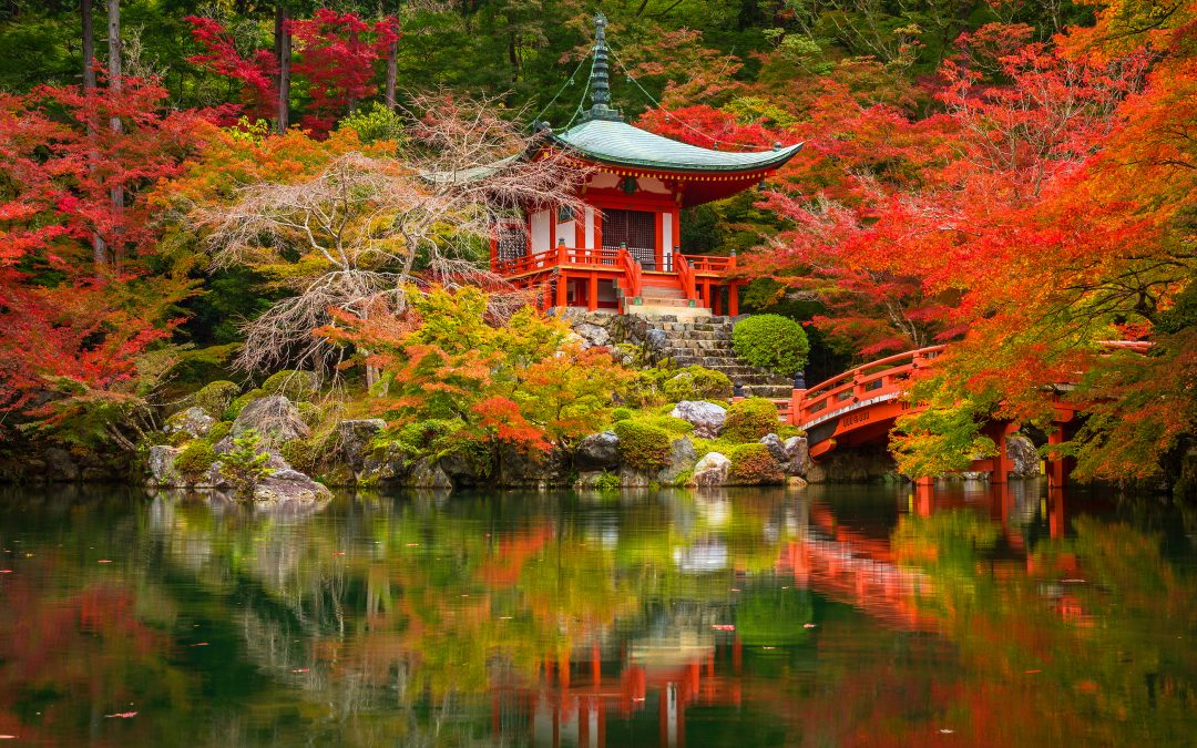 Top Things to Do in Japan – Guest Post By Carolyn Ballard